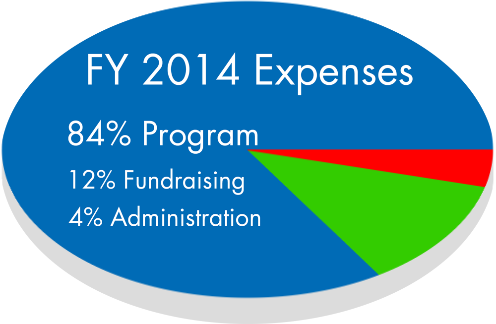 Expenses pie chart FY2014