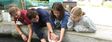 Hayley feeding manatee